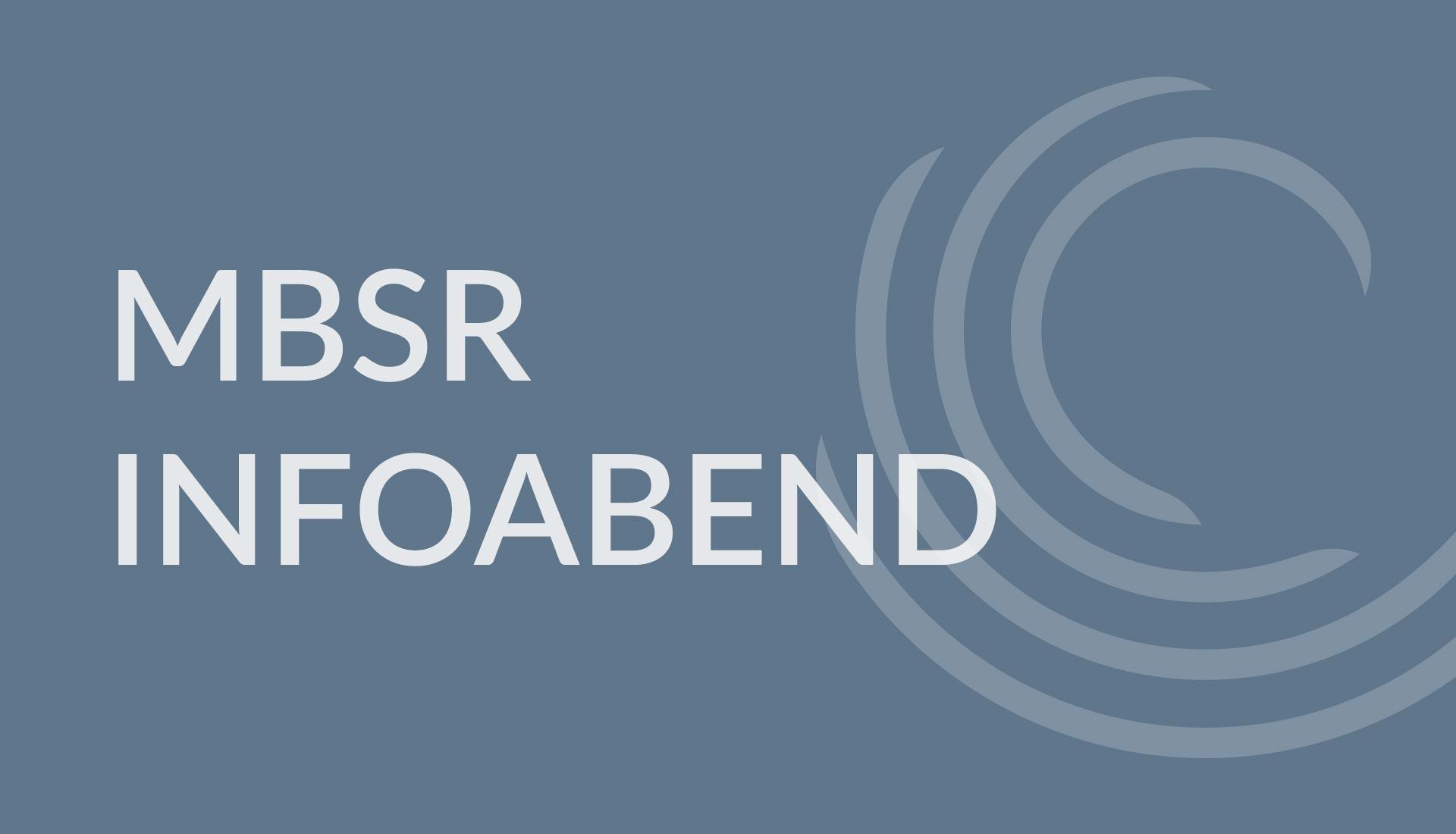 MBSR Infoabend mit Julia Seegebarteh